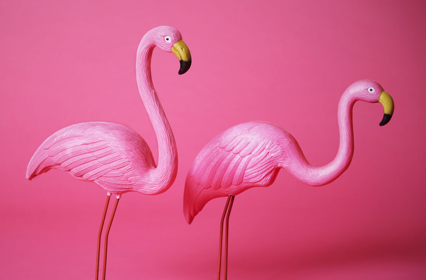 Pink-flamingo-yard-ornaments-1366-0618