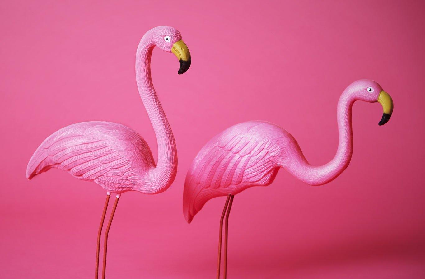 Pink-flamingo-yard-ornaments-1366-0618