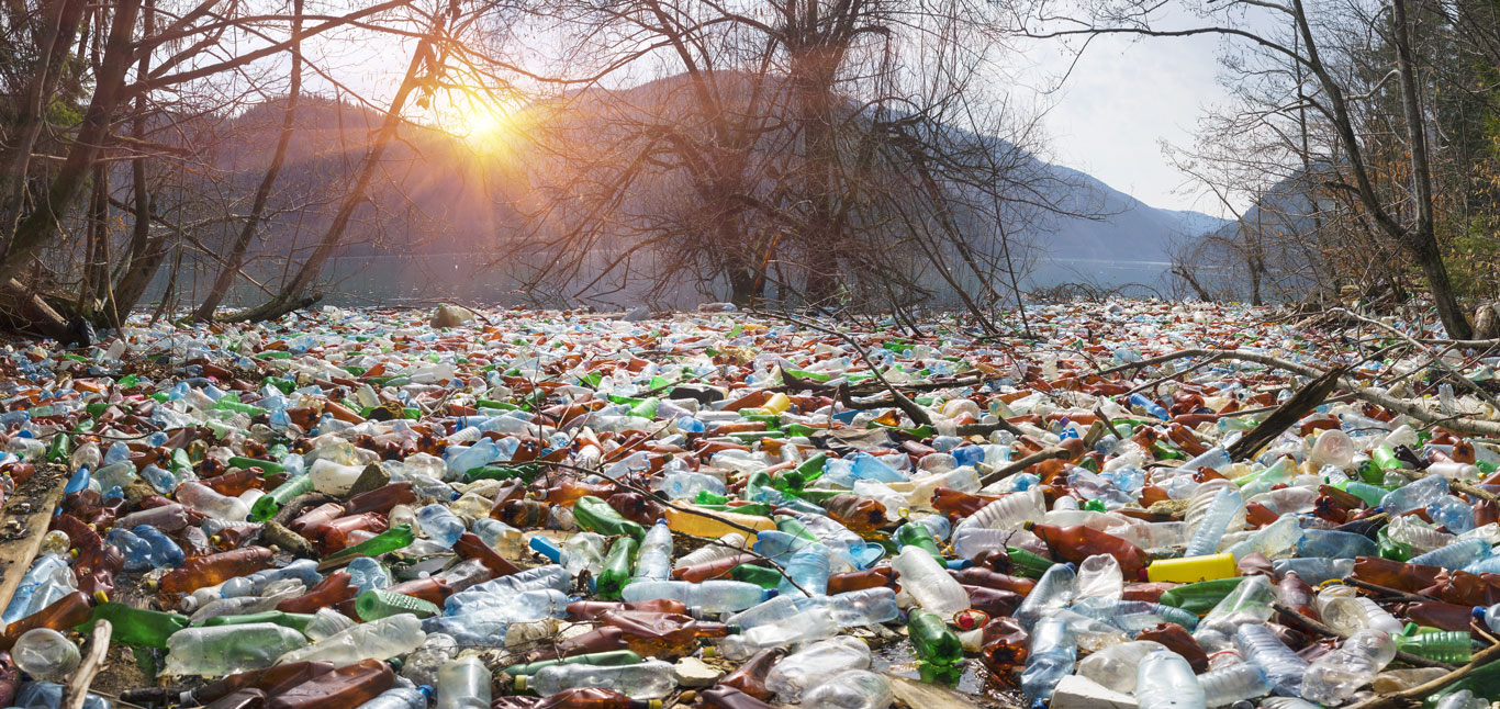 Plastic-Bottle-Waste-1366-0419