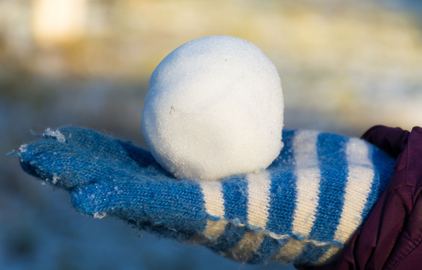 Snowball-1366-0119