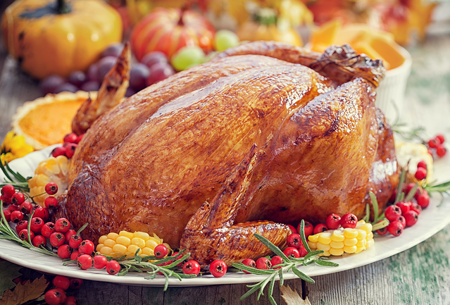 Thanksgiving2-1366-1117.png