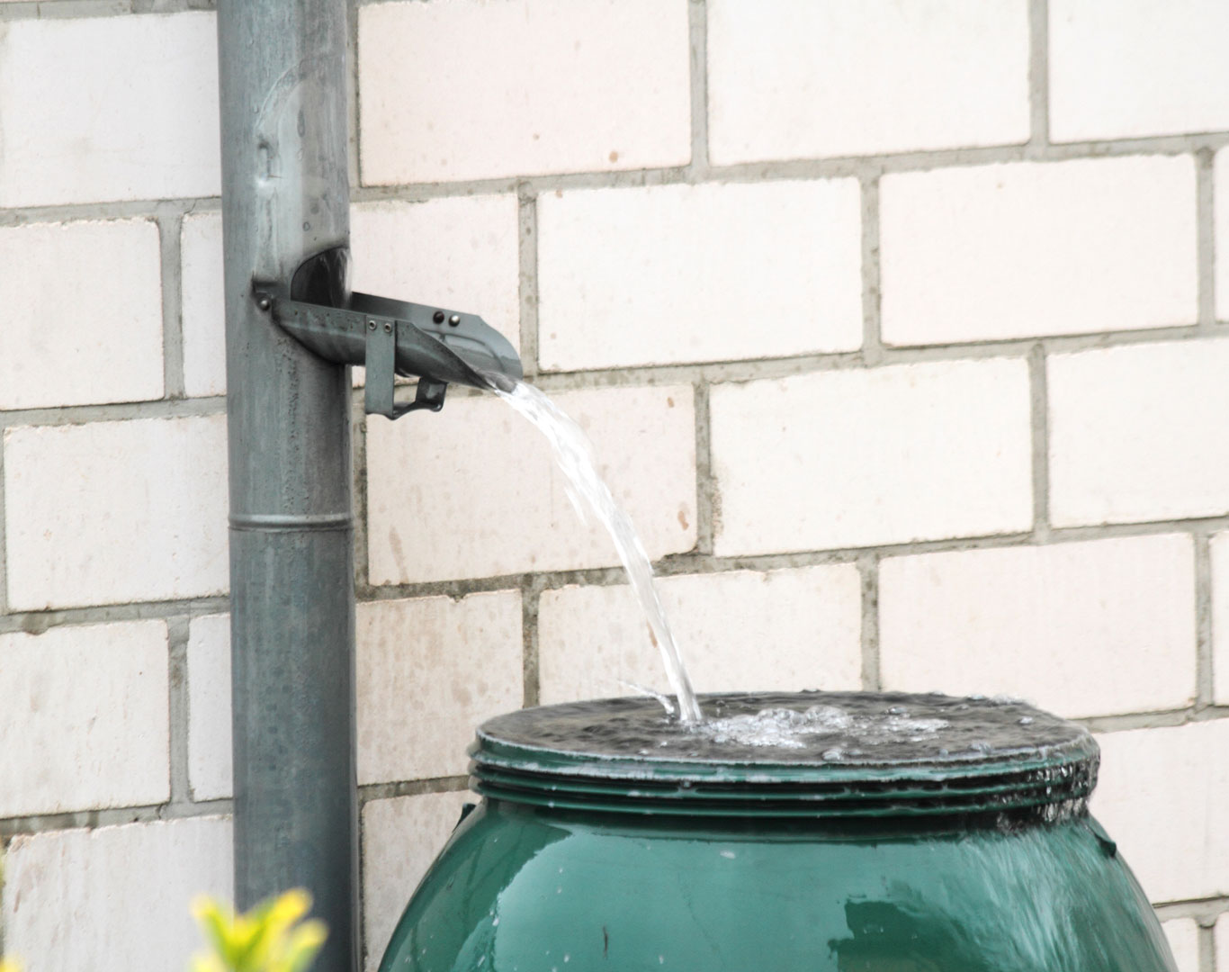 Water-collection-gardening-1366-0618