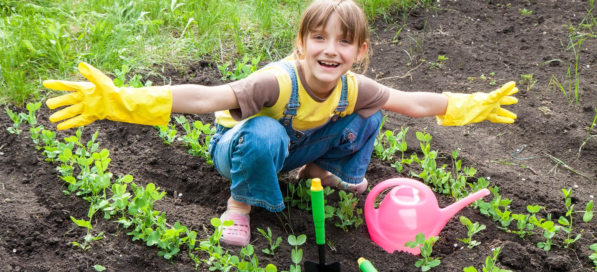 Gardening-2024-0618